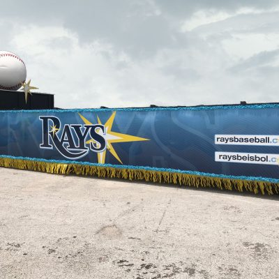 Tampa Bay Rays - 10'x35' - Holds 15-20